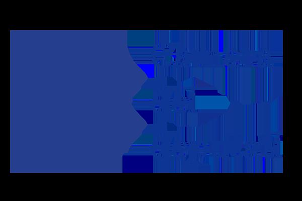 Prosegue L'attività Dell'Adise Nel Nuovo Anno: Pianificazione Annuale E Audizione In Commissione Cultura Della Camera Dei Deputati